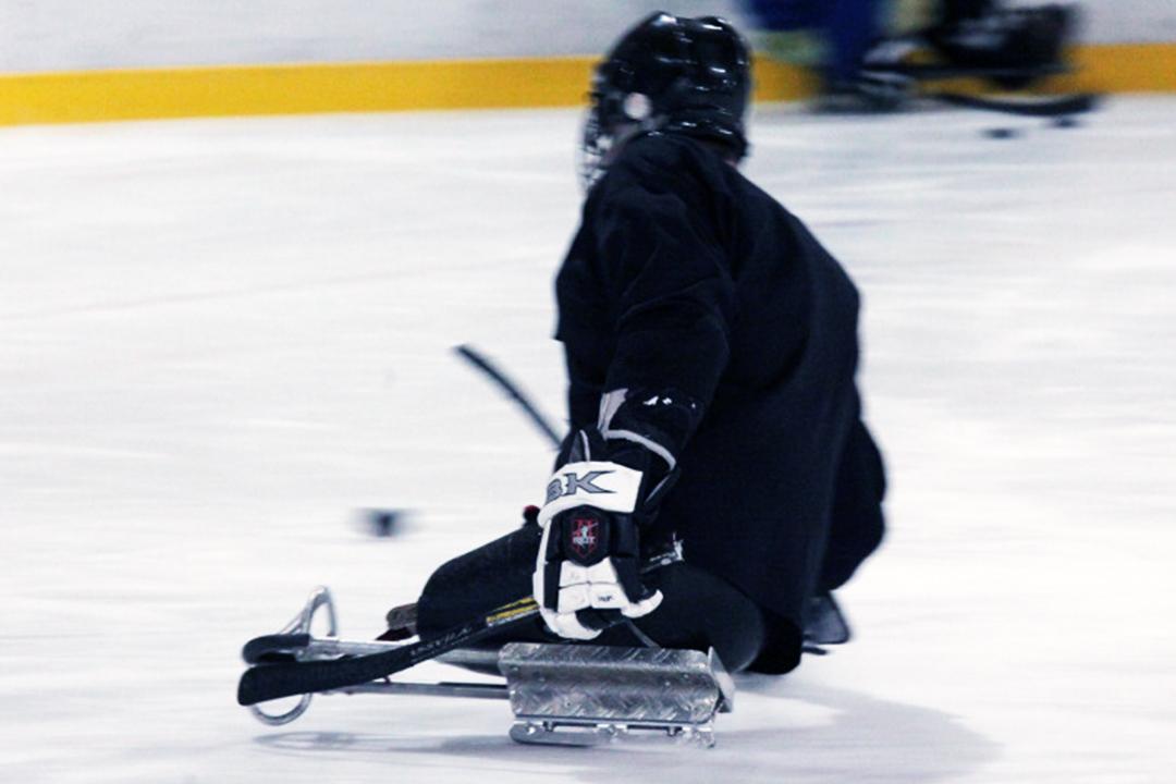 sledge3