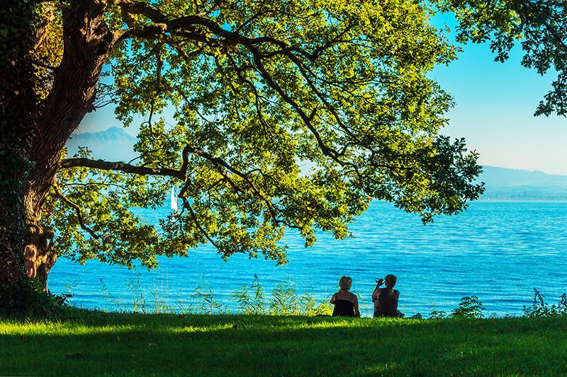 Oktoberfest München See