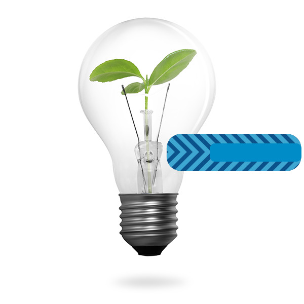 BlaBlaCar también quiere lograr un mundo más verde