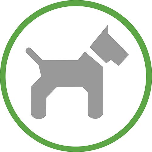 Поездки с животными на машине BlaBlaCar