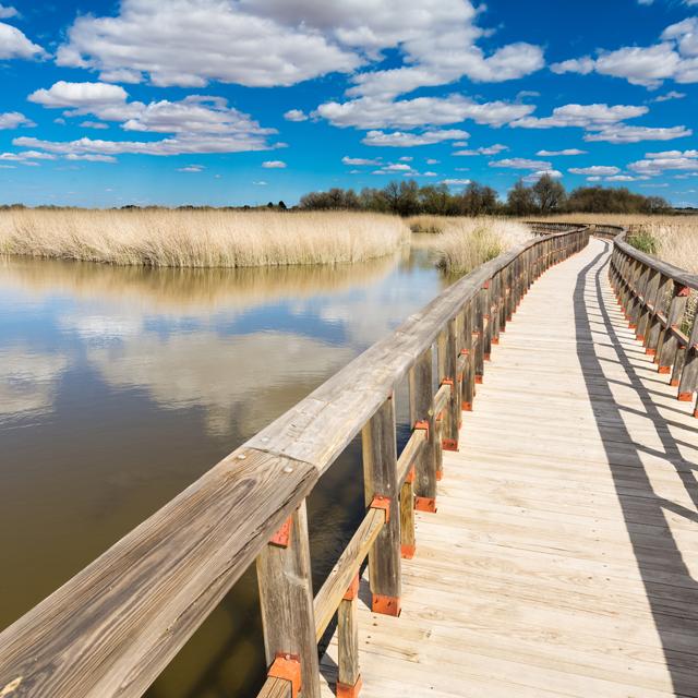 Escapada natural en La Mancha: Ruidera y Daimiel